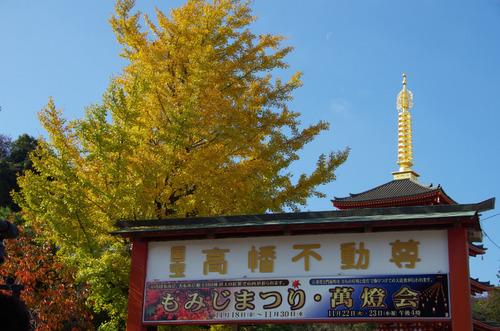 高幡不動201111-13