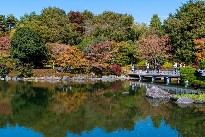 昭和記念公園201811