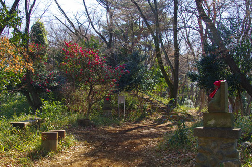 高幡不動尊201302-7