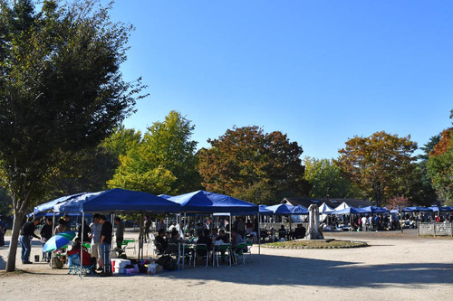 昭和記念公園201611