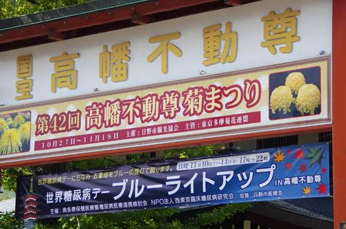 高幡不動尊ブルーライトアップ2012-10