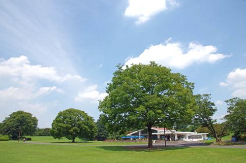 昭和記念公園201408-4