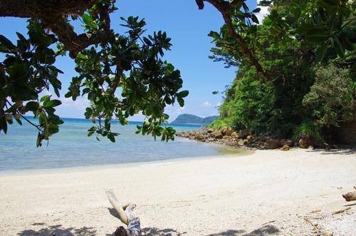 西表島船浮イダの浜201108-7