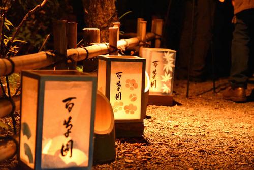 京王百草園2015-5