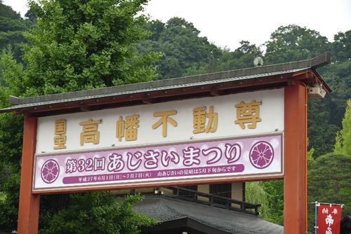 高幡不動尊201505-12