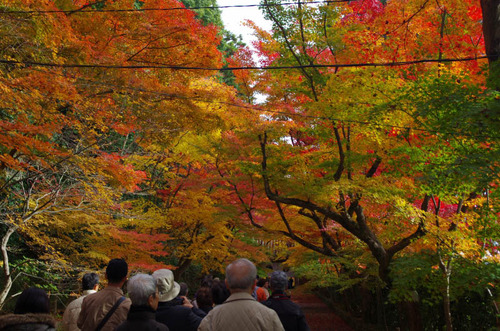 京都201211-2