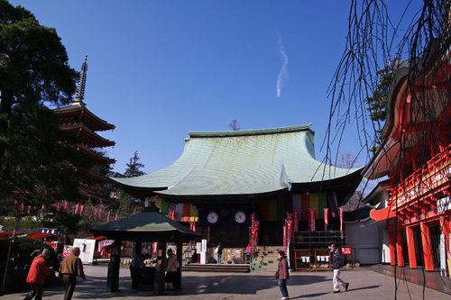高幡不動尊梅201002-2