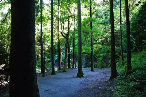 道志キャンプ201009-14