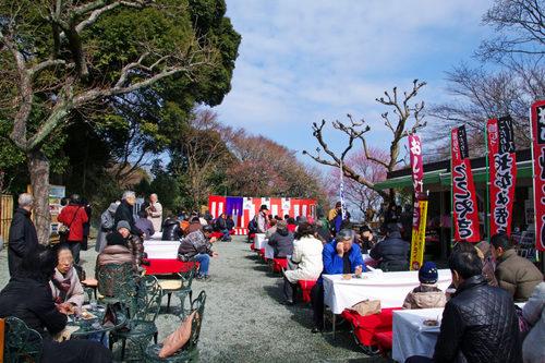 百草園梅祭り201002-4