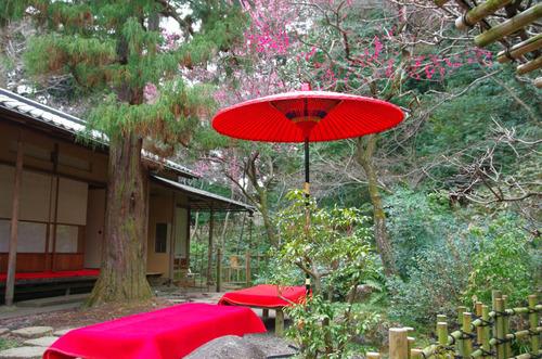京王百草園201503-7