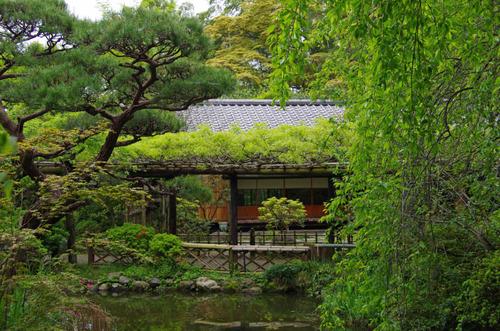 京王百草園201204-8