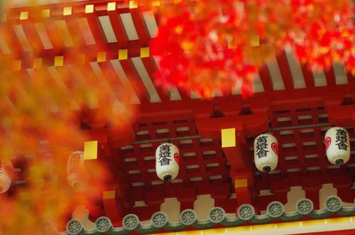 高幡不動尊201211-7