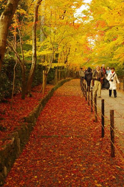 京都201211-16