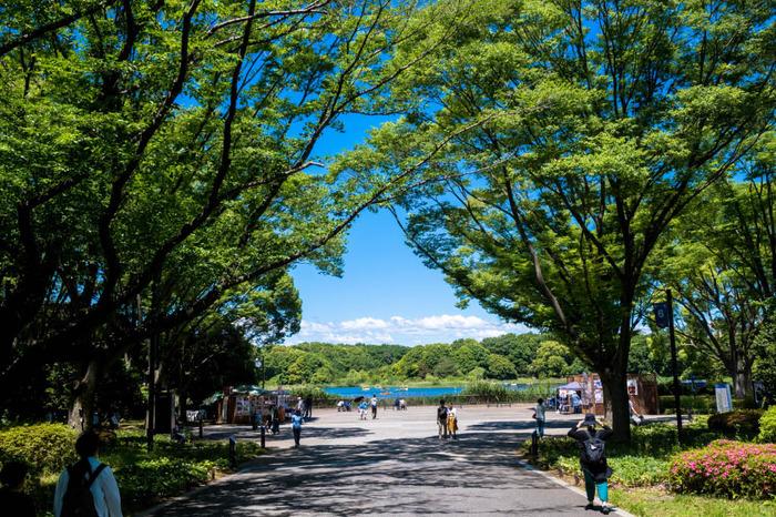 昭和記念公園201805