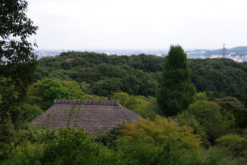 百草園201010-4