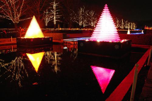 昭和記念公園イルミネーション201012-2