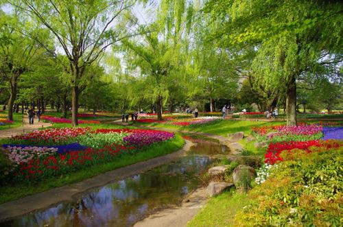 昭和記念公園201304-5