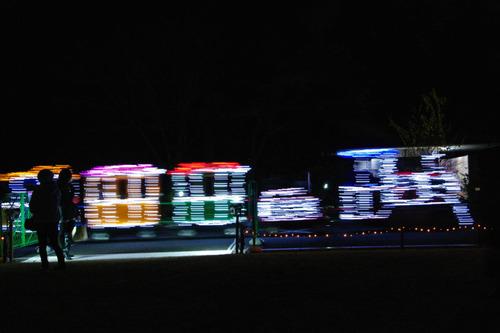 昭和記念公園イルミネーション201012-32