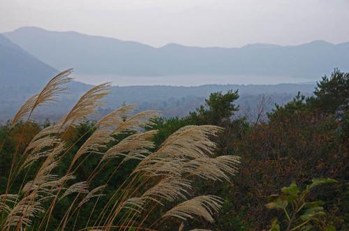 富士五湖の紅葉2013-4