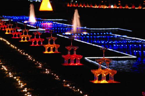 昭和記念公園イルミネーション-5