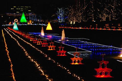 昭和記念公園イルミネーション201012-3