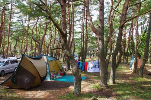 本栖湖キャンプ場201311-9
