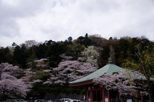 高幡不動尊201104-4