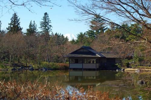 昭和記念公園201501-7