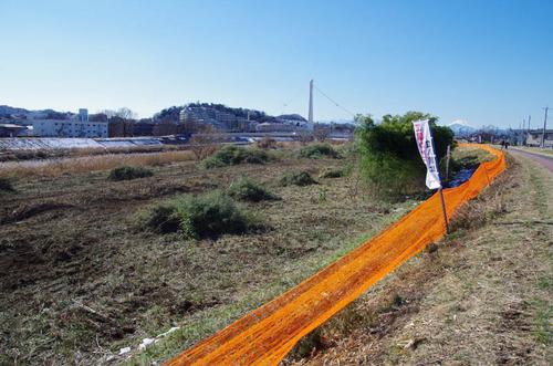 浅川河川敷201301-5
