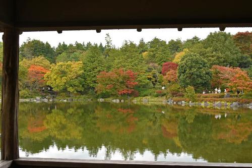 昭和記念公園201511-10