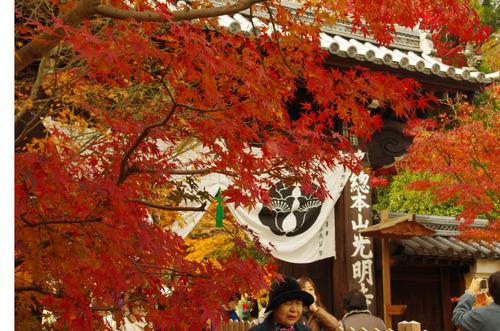 京都201211-5