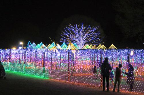 昭和記念公園201501-2