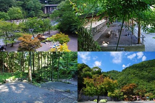 道志キャンプ201009-18