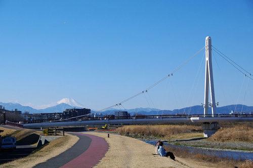 散歩道201001-18