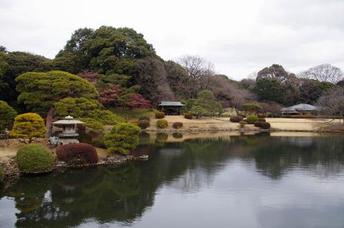 新宿御苑201201-8
