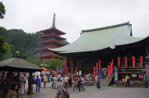 高幡不動尊あじさい祭り201106-1