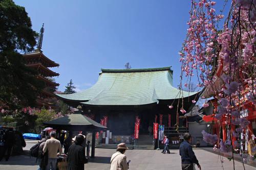 高幡不動尊20100411-1
