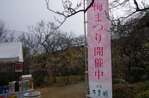 京王百草園201302-13
