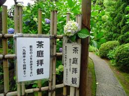 高幡不動尊090606-2