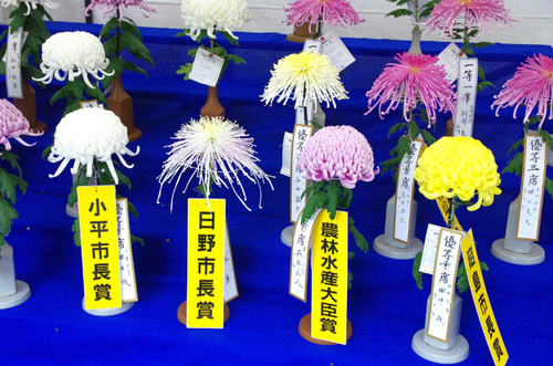 高幡不動201411-4