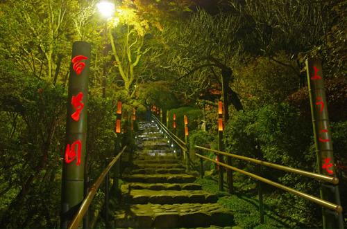 京王百草園201111-13