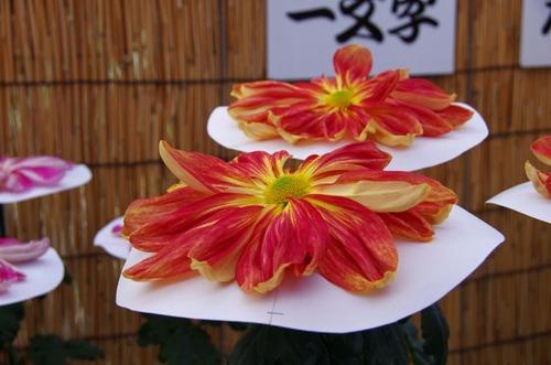 高幡不動201211-6