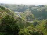 高尾山0420登山道からの景色