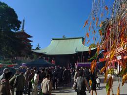 高幡不動尊20091115-7