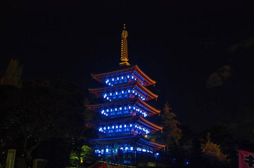 高幡不動尊ブルーライトアップ2012-8
