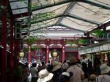 浅草寺2008-2