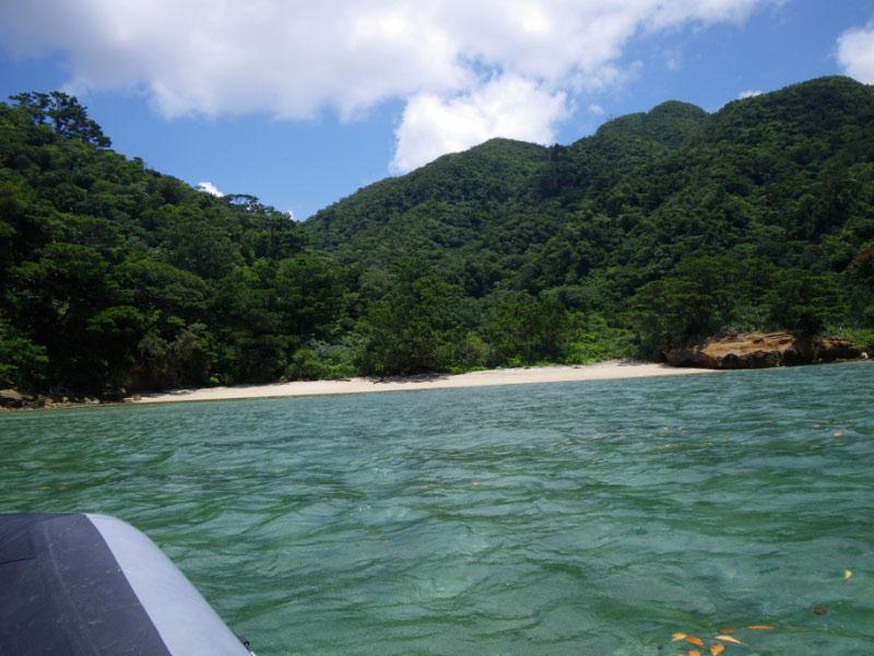 西表島 : ちびたの気まぐれ日記 ...