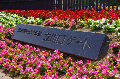 昭和記念公園201105-13