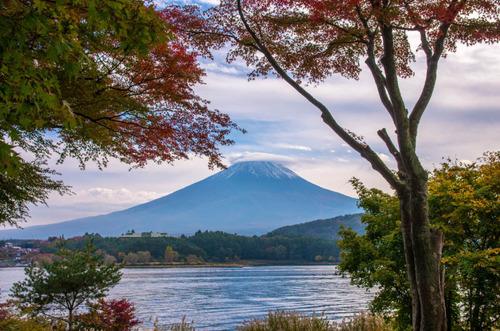 富士五湖の紅葉2013-8