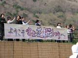 富士芝桜見物台